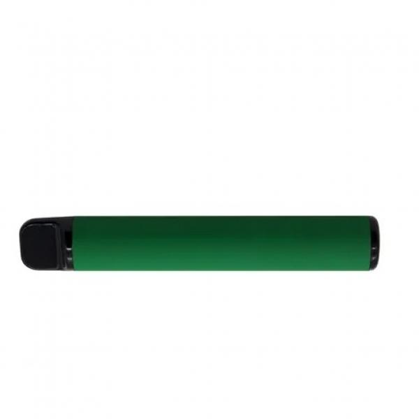 2020 Popular 1000 Puffs Fruit/Tabacco Flavors Disposable Electronic Cigarette #3 image
